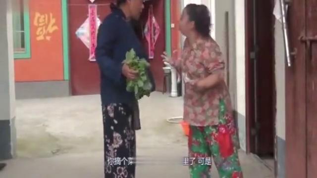 民间小调:憨妮与未来婆婆打架,逼婆婆同意结婚的事