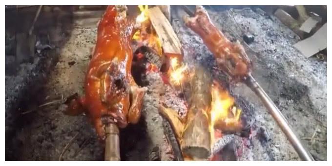 """柬埔寨一只烤乳猪3百元,原以为很贵,切下去那一刻""""大有乾坤"""""""