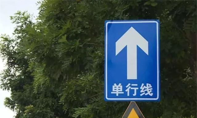 开车误入单行道怎么办?交警:别将错就错,这个漏洞能帮你补救!