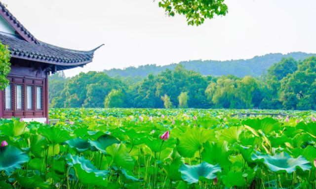 中国坚持免费的景区,17年免门票,游客:太美了