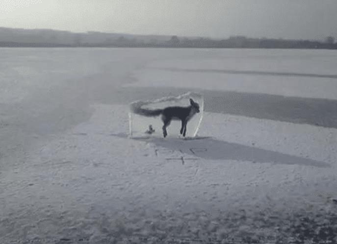 7张照片告诉我们,大自然远比我们想象的可怕得多!
