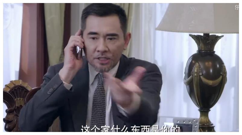 丁佳慧投资失败,潘伟森发现丁雅琴把自己名下的股份转走!