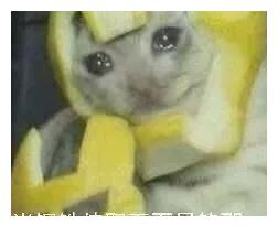 热门斗图表情包|柠檬酸图片