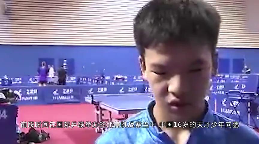 刘国梁回应邓亚萍忠告,国乒张本智和已崛起,他将带头碾压日乒
