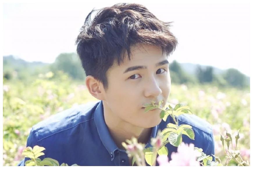 给偶像一朵花:王俊凯美,易烊千玺帅,刘昊然果真画风清奇