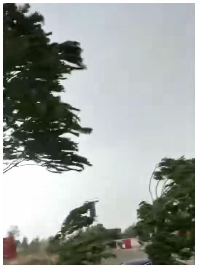 风狂雨劲邯郸城