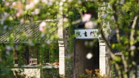 乌镇乌村春游赏花三重乐:古镇闹香市,文艺逛展览,亲子踏青游