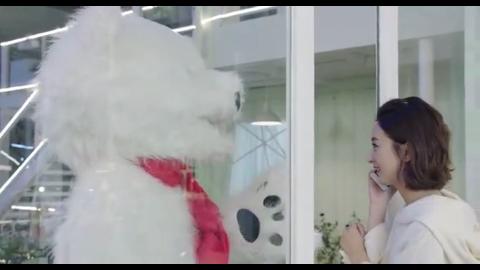 宠溺十足,金瀚办成北极熊跳舞,赵丽颖看着好开心
