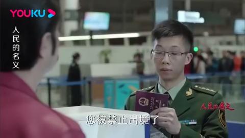 赵瑞龙被禁止出境,立马电联神秘二姐求救,二姐一个电话搞定!