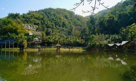 中国唯一的热带雨林自然保护区——西双版纳原始森林公园