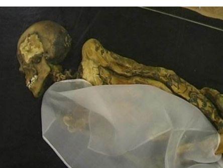 木乃伊:古埃及人将尸体制成木乃伊的方法有不少改变