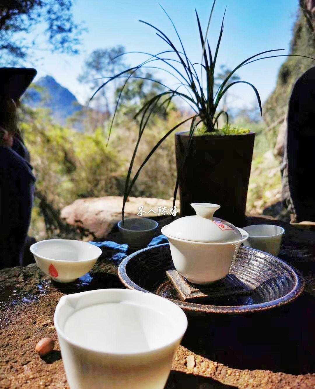 闲境皆春景,静待一壶茶。早安~武夷山