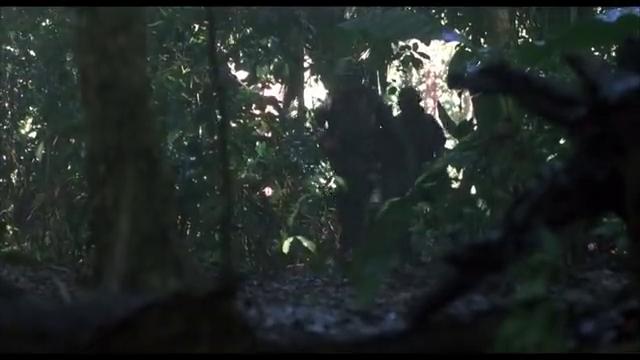 一部经典的美越丛林战争电影,美军在丛林中遭越军疯狂袭击