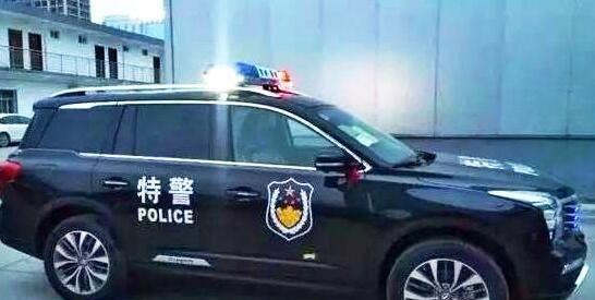 国产警车大盘点,用自己的车一样很帅(2)