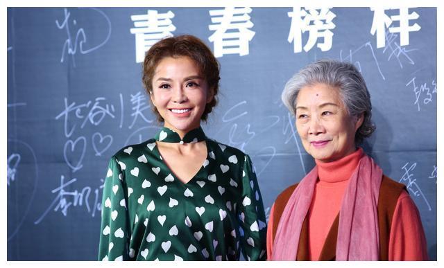 央视女主播整容现状:梁璐、朱迅每况愈下,胡蝶、王小骞减龄10岁