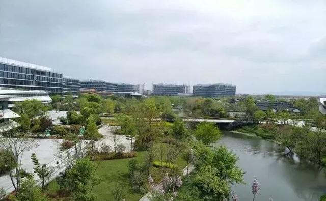 浙江改名最失败的3所大学,常被认为在杭州,学生:学校改名真坑