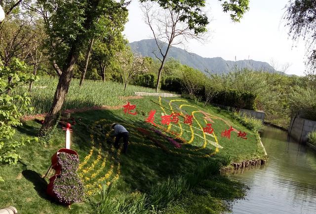 杭州旅游之大连湿地一日游v湿地棒棰岛攻略西溪图片