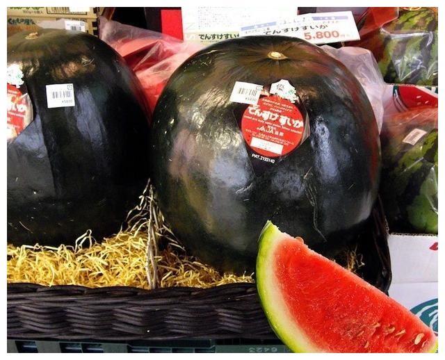 在日本用勺子吃西瓜就是炫富?外国人真的羡慕我们!