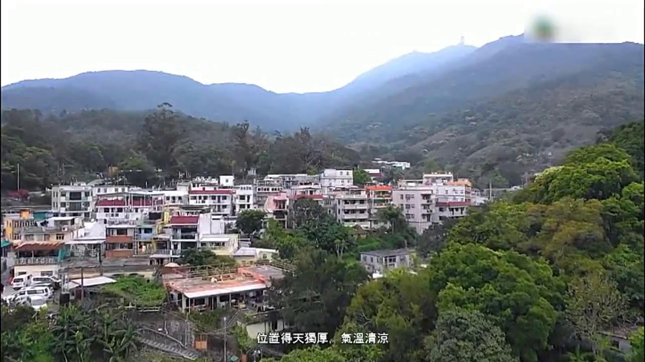 香港,开业30多年的自助茶楼,鸡屎藤茶粿