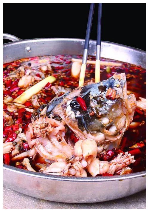 一款餐厅美蛙鱼头火锅,配方,操作流程,烹饪技法全公开