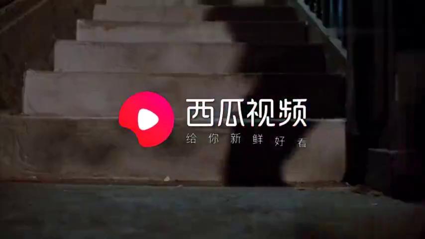 """群龙戏凤:莫少聪与袁洁莹新婚夜被追杀,林正英""""我招谁惹谁了"""""""