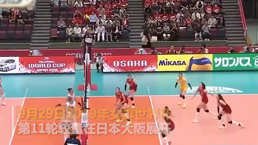 世界杯中国女排30阿根廷11连胜第四次全胜夺冠!