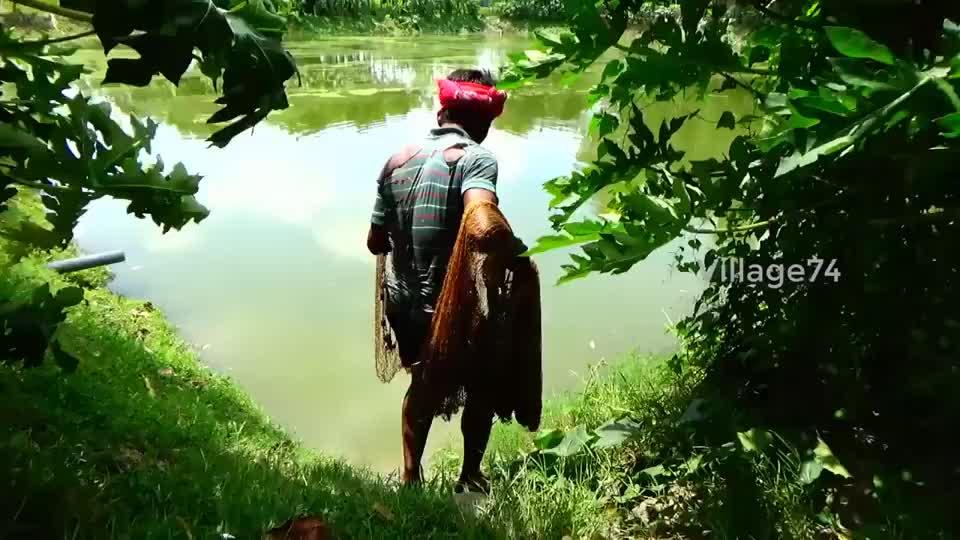 大叔往绿绿的水塘里撒一网看看他捕获了啥