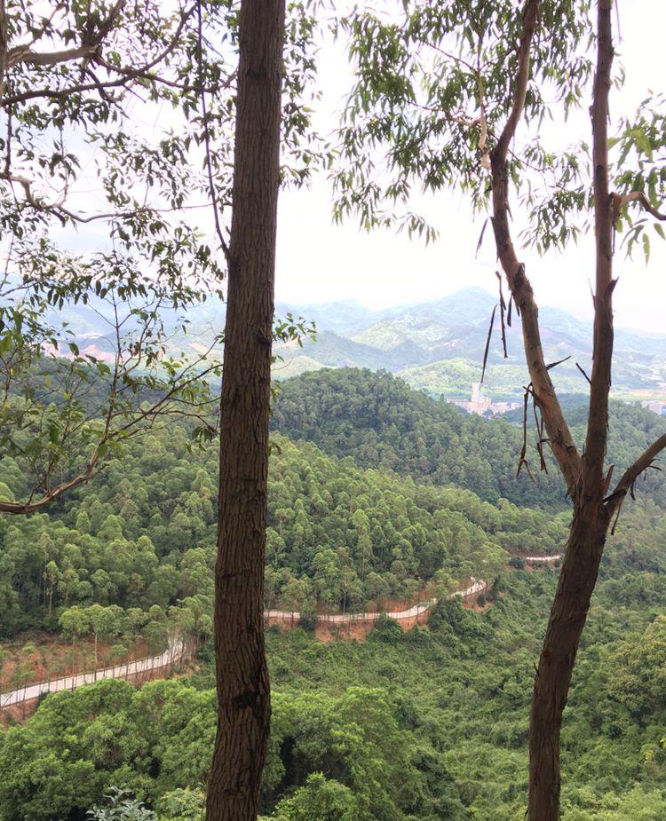 走最烂的路、爬最野的山——大尖山健身游