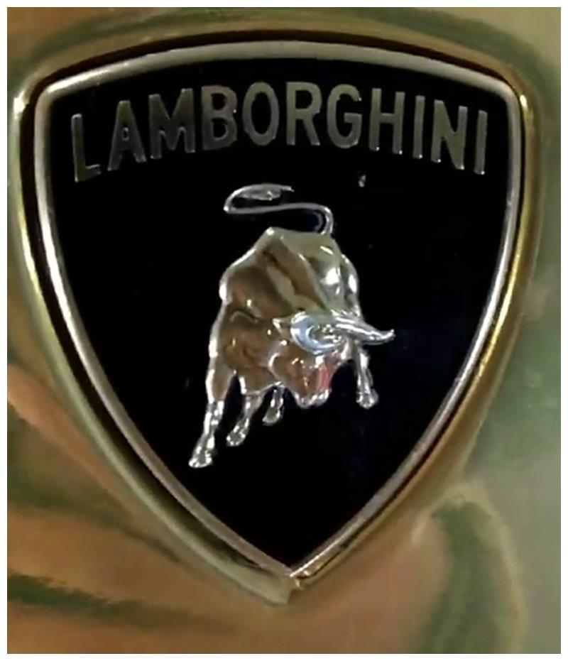 """438万兰博基尼现车库,全车贴膜""""土豪金"""",车名源于一头牛!"""