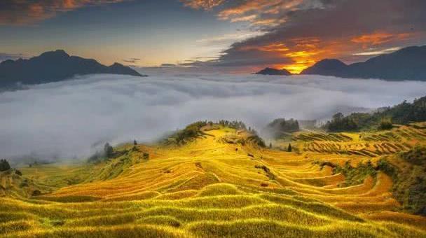 浙江也私藏了一座山城,承包了今夏最撩人的梯田、云海与星空!