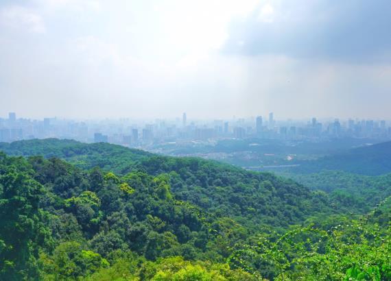 海拔2000米的玻璃天桥,就在洛阳白云山,你敢来挑战吗?