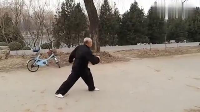 """功夫高手在民间!公园晨练传统武术""""弹腿"""",你看这身手如何"""