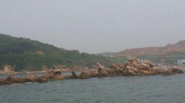 莲花山观景台,欣赏大连风光的第一制高点,星海湾风光尽收眼底