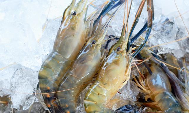 烤箱版芝士焗大虾,在家也能做出餐厅里的西式料理