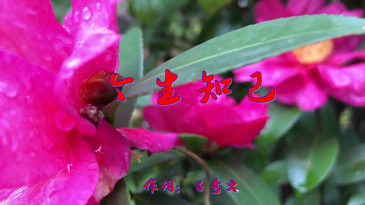 望海高歌&王爱华的一首《今生知己》,动听,温馨