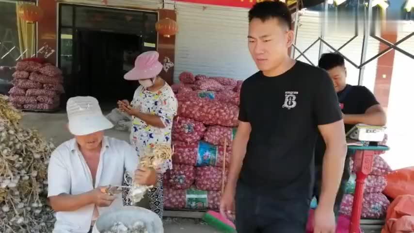 大蒜主产地江苏邳州,蒜种价格是多少,看蒜商咋说
