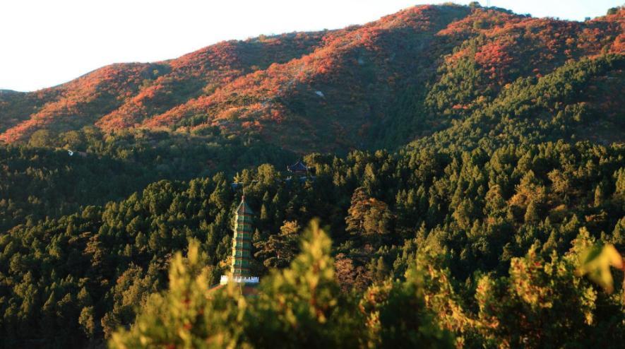 厌倦香山的人山人海,还有这么个小景点赏秋的地方,也在北京