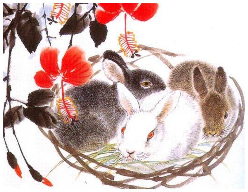 兔人,2月有大喜事,不接不吉利,不开玩笑!