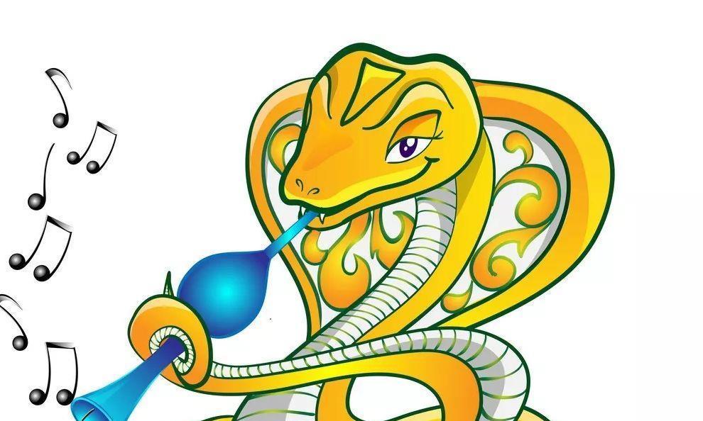 属蛇什么价值观会让人难以接受