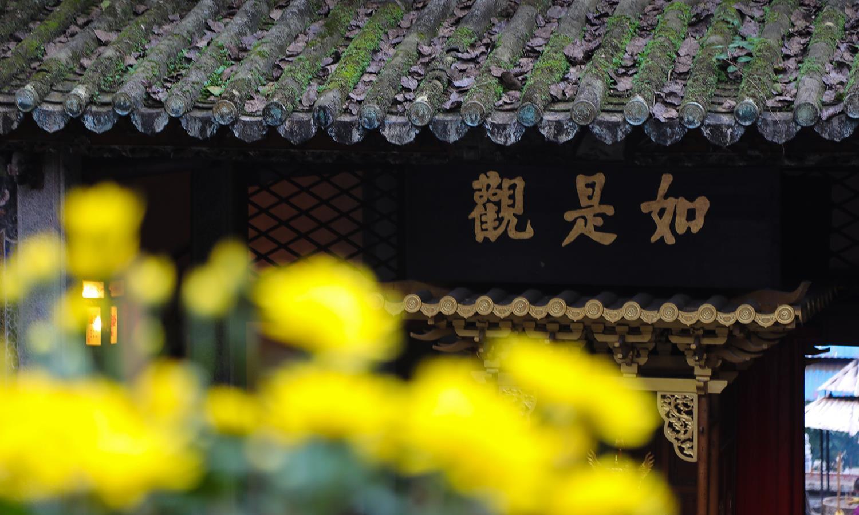 中国颜值最高的4座千年古寺,树木葱郁清幽僻静,是旅行也是修行