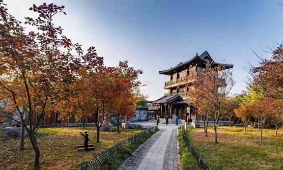百万人游潍坊,山东名校博士结束北漂,首选青州的50个理由