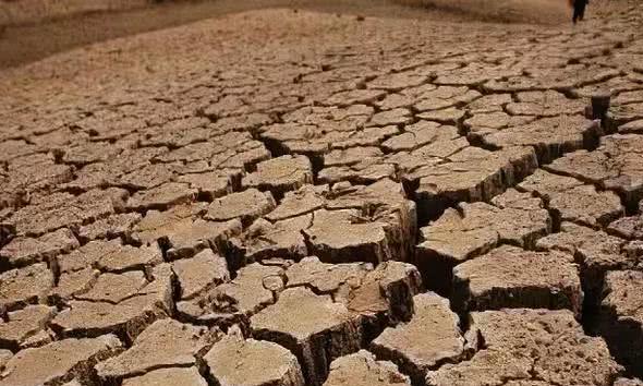 最热的夏天:乾隆八年,12天热死11400人