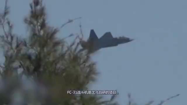 FC-31战斗机降低造价是否能自用,战机配置性能会大大缩水