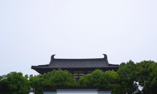 我国最洁癖的城市,乱扔垃圾罚钱100,干净程度媲美日本