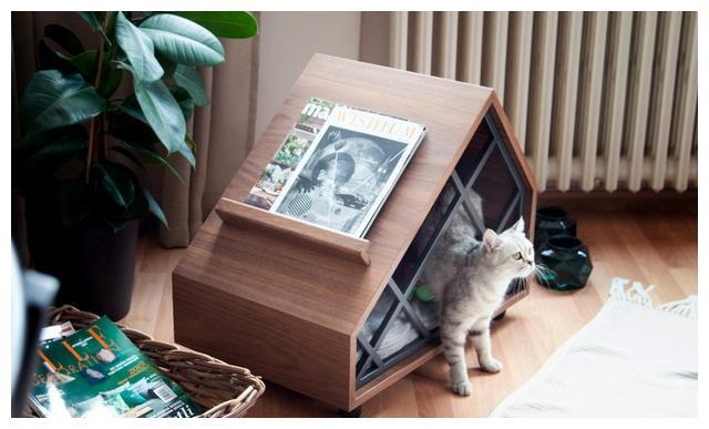 走心的动物友好型家具设计,给宠物一个安乐窝