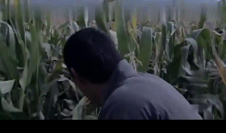 马四辈玉米地里干坏事,被抓后,竟还英雄救美救了枝枝