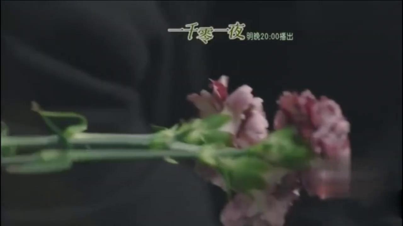 一千零一夜:邓伦红紫鲜花不分,迪丽热巴得知柏海色盲真相