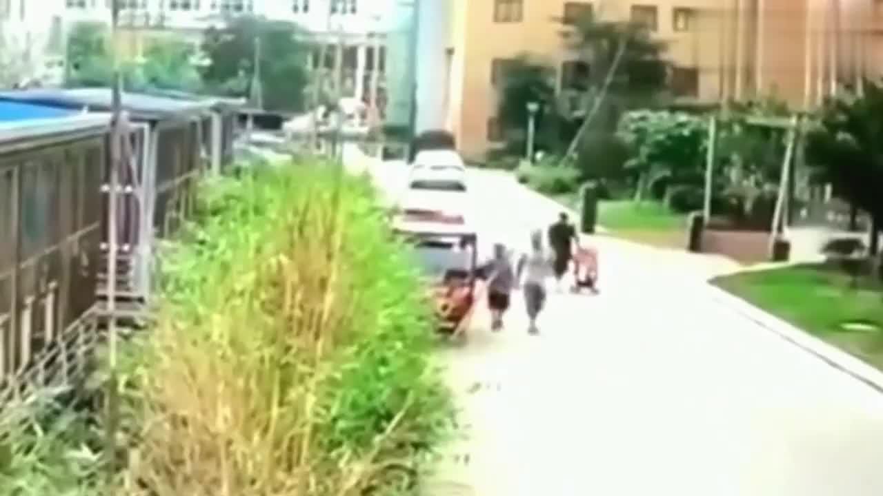 女子推着婴儿在小区里散步,几秒后经历了悲惨的噩梦