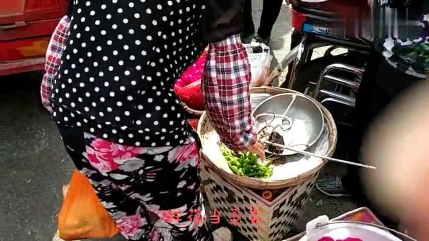 大理限时菜摊街早市,人流涌动:松茸,各类野生菌,鲜花当菜卖