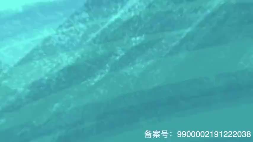 辛芷蕾能吃苦被林超贤导演选中 彭于晏李现是男神说好的六点见